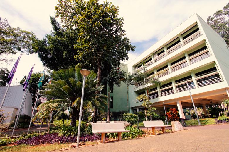 Sediado no ICMC, o projeto contempla pesquisadores de mais 30 universidades brasileiras, além de parcerias com diversos institutos, empresas e universidades estrangeiras - Crédito: Divulgação