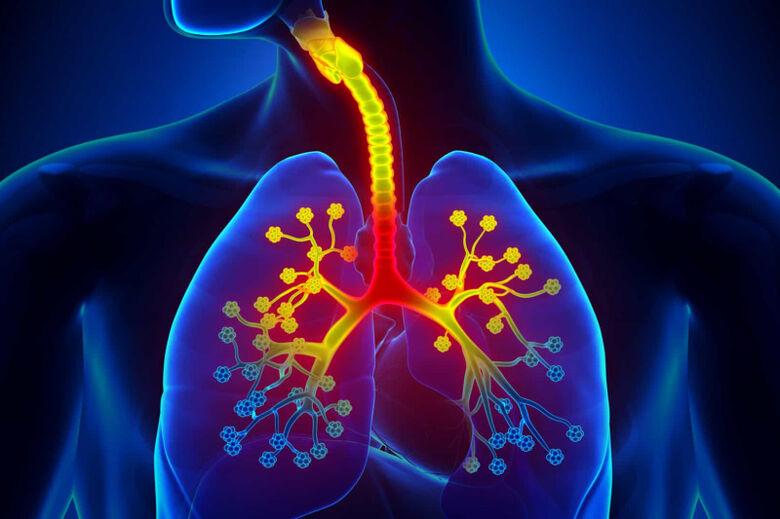 Os benefícios das vacinas pneumocócicas em tempos de pandemia - Crédito: divulgação
