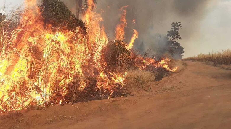 Corpo de bombeiros atende várias ocorrências de queimadas em São Carlos - Crédito: Whatssapp SCA - (16) 99633-6036