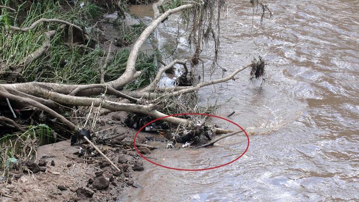 Corpo de Silveira foi encontrado oito quilômetros rio abaixo -