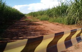 Local onde corpo foi encontrado em Rincão (Foto: Gabriela Martins) -