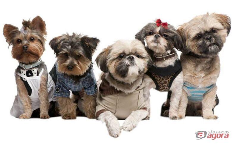 Iguatemi promove 1º Pet Day neste domingo -
