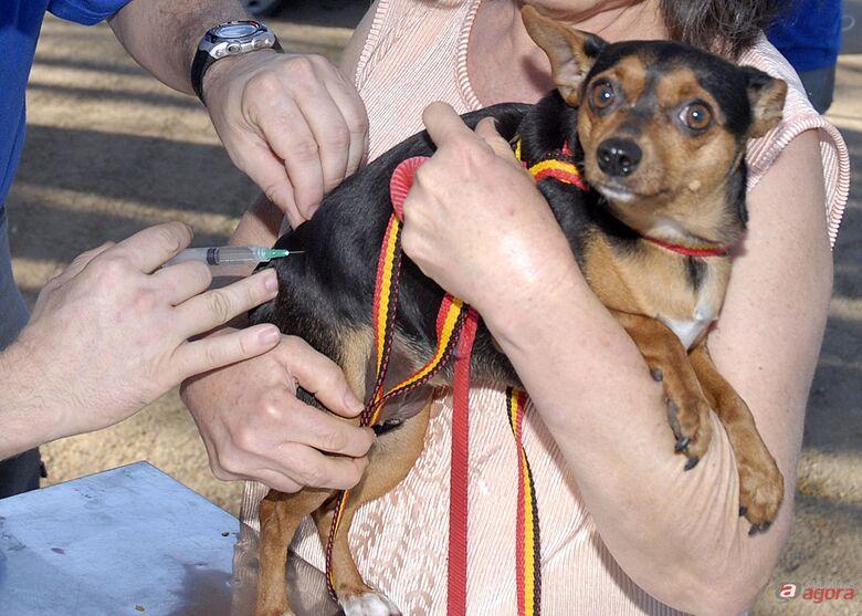 Zoonoses promove vacinação de cães e gatos na zona rural de São Carlos -