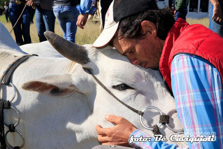 Solidariedade e amor: cavaleiro faz carinhos em sua montaria. Gratidão pela companhia - Crédito: Be Caviquioli e Lau Menezes