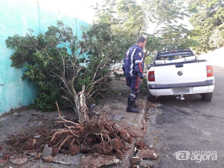 Saveiro arranca árvore e motorista desaparece - Crédito: Maycon Maximino