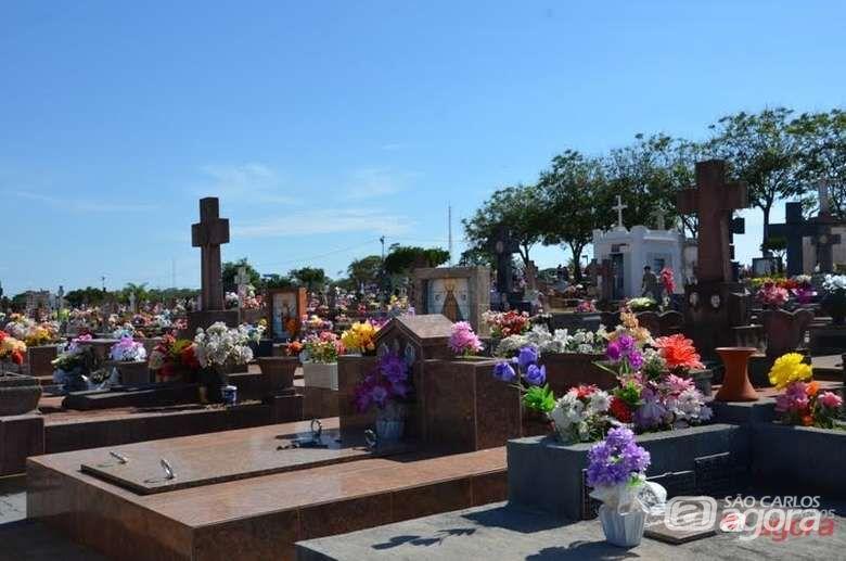 GM detém jovem após furto em cemitério -