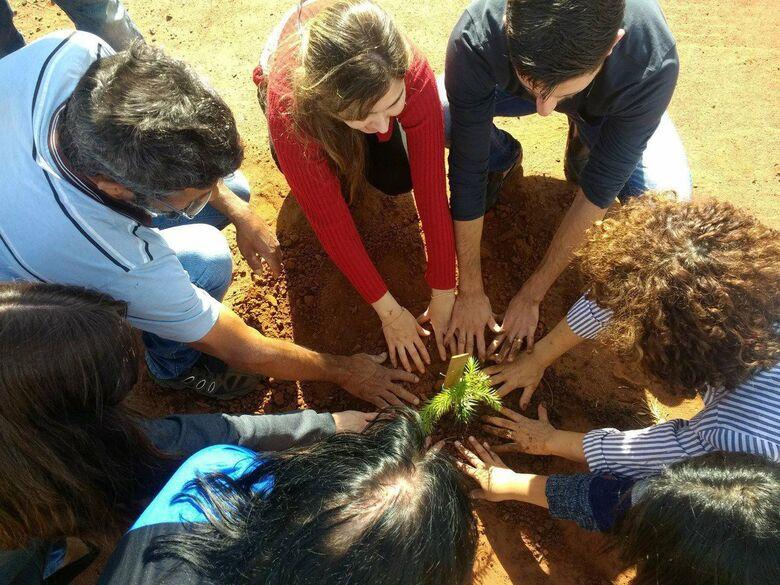 Voluntários plantam árvores em rotatória do Embaré: ecologicamente correto - Crédito: Marcos Escrivani
