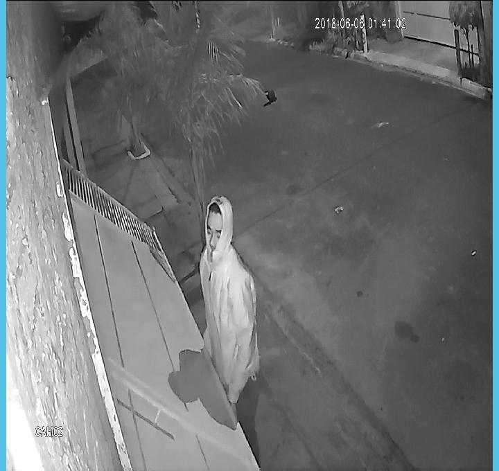 Momento em que o desocupado tentava abrir o portão da garagem da residência - Crédito: Divulgação
