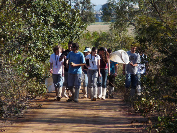 UFSCar promove visita monitorada ao Cerrado do Campus São Carlos - Crédito: Divulgação