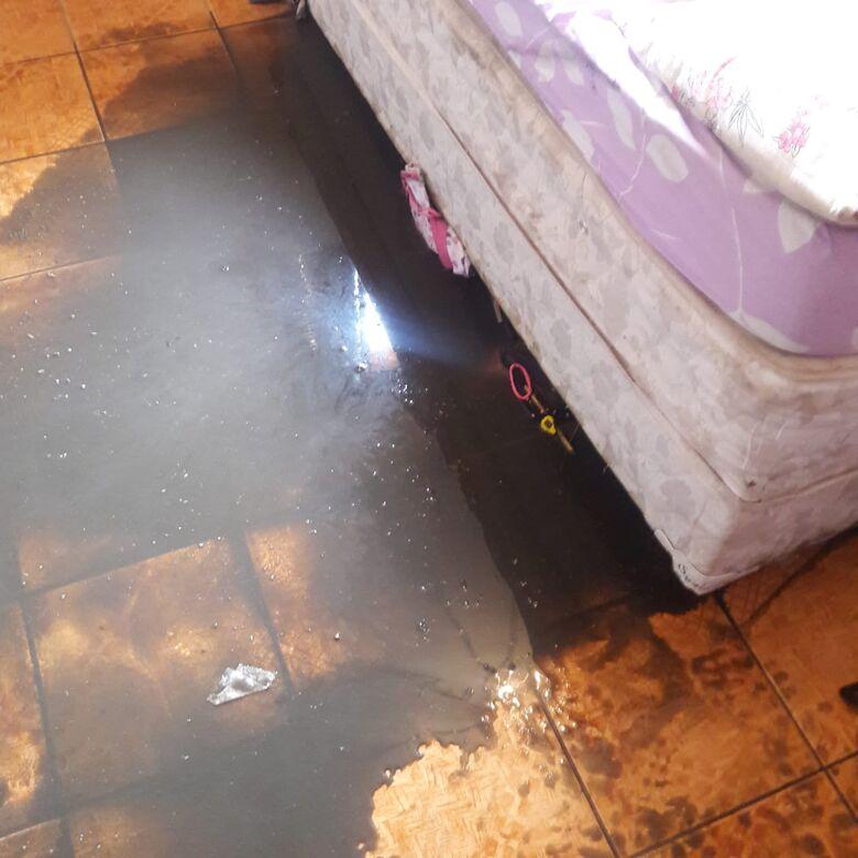 Dejetos invadiram o quarto de duas crianças de 5 e 6 anos - Crédito: Divulgação