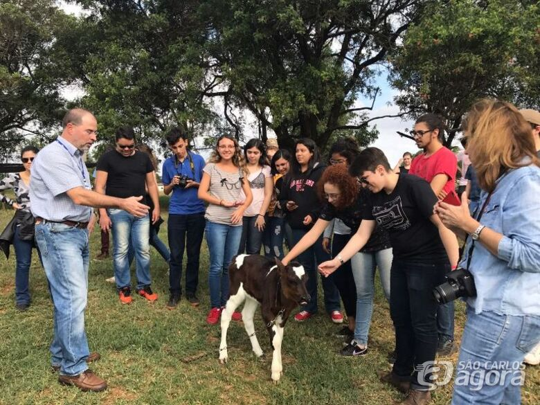 No campo, os estudantes compreenderam o funcionamento de um sistema de produção de leite e metodologia - Crédito: Gisele Rosso