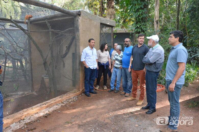 Micos, saguis e papagaios têm novos recintos no Parque Ecológico -