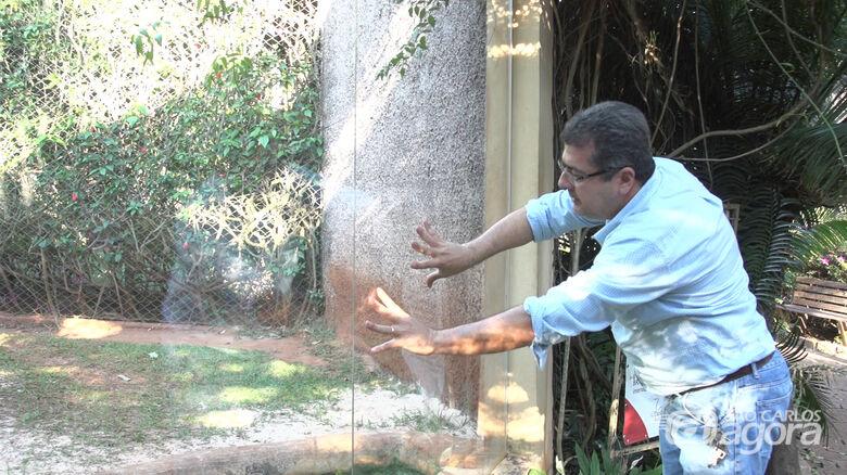 Prefeitura descarta risco de onça escapar no Parque Ecólogico de São Carlos - Crédito: Mapio