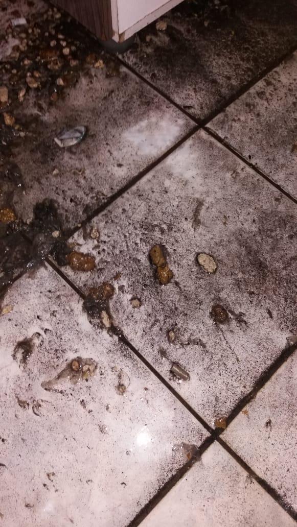 Após trabalho do Saae, fezes invadem casas no Boa Vista - Crédito: Divulgação