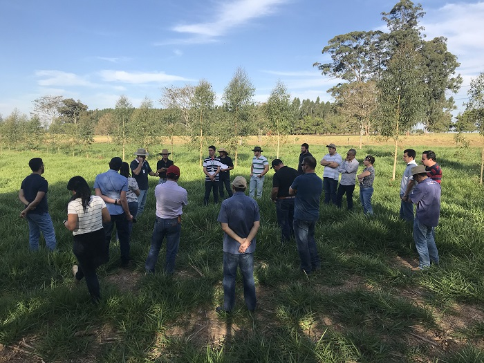 Participantes do curso estiveram no campo observando integração - Crédito: Ana Maio