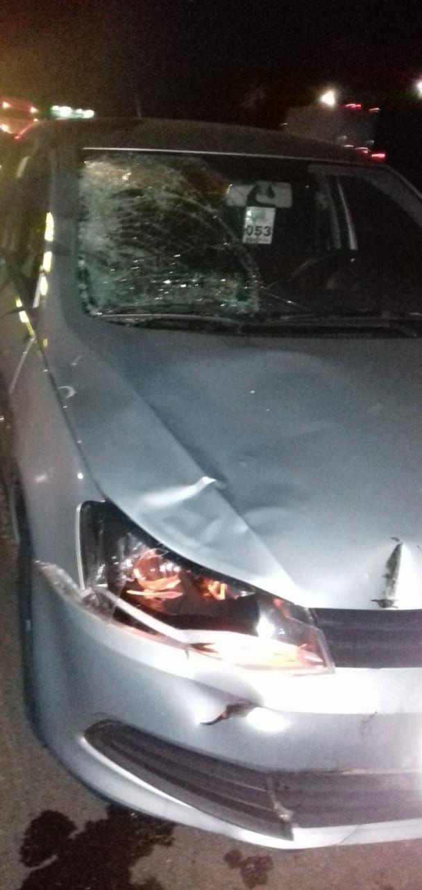 Homem morre atropelado na rodovia Washington Luis - Crédito: Grupo Rio Claro