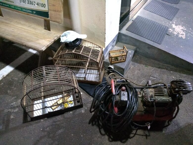 Dupla é detida com pássaro silvestre; um deles era procurado pela Justiça - Crédito: Divulgação