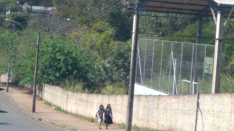 Escola João Jorge Marmorato vira uma floresta - Crédito: Divulgação
