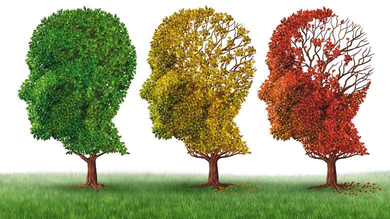 Santa Casa e ABRAz promovem o Dia Mundial da Doença de Alzheimer - Crédito: Divulgação