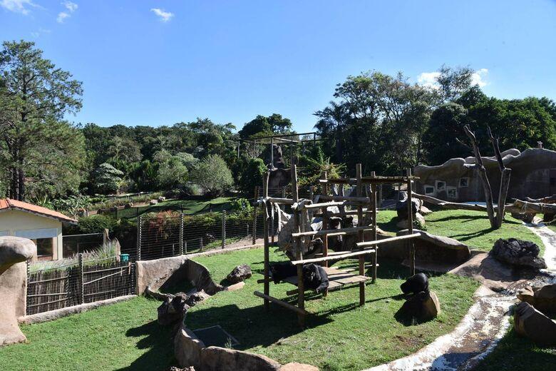 Volks do Brasil renova parceria com o Parque Ecológico de São Carlos - Crédito: Divulgação