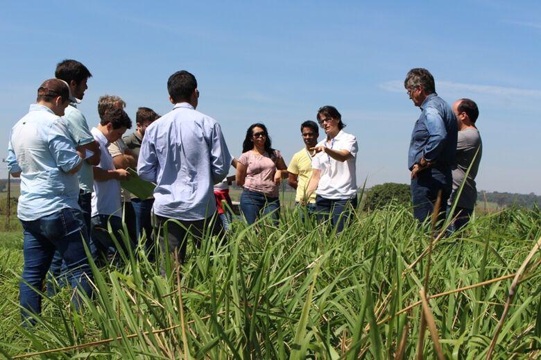 Curso avançado em manejo de pastagens é realizado em São Carlos - Crédito: Gisele Rosso