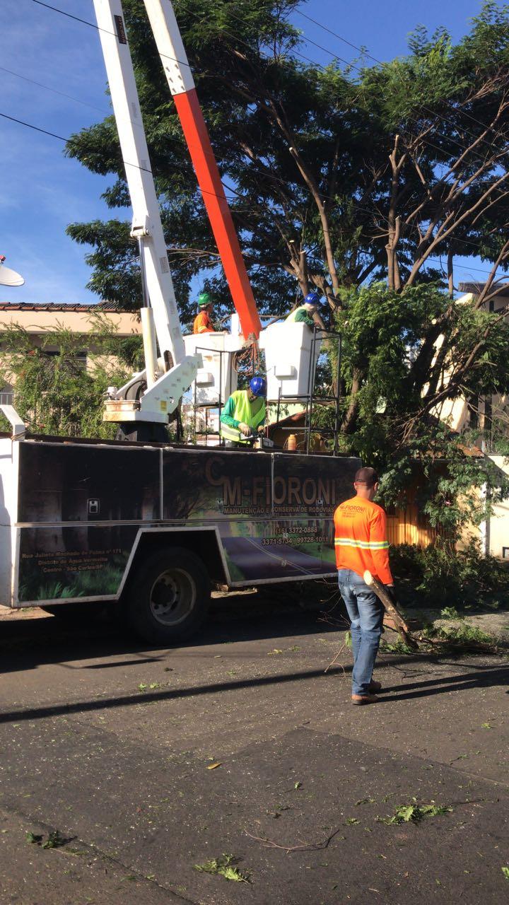 Prefeitura realiza corte de duas árvores com risco de queda na região da Praça da XV - Crédito: Divulgação