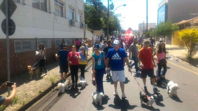 Cãominhada na Vila Nery arrecada 400 quilos de ração para cães - Crédito: Divulgação