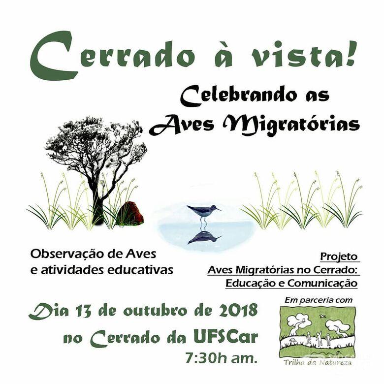 UFSCar promove observação de aves migratórias no Cerrado do Campus São Carlos -