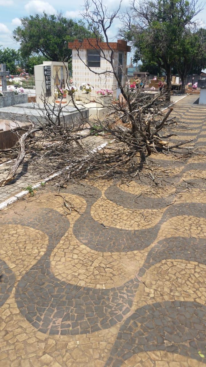 Abandono do Cemitério Santo Antonio de Pádua revolta moradores - Crédito: Divulgação