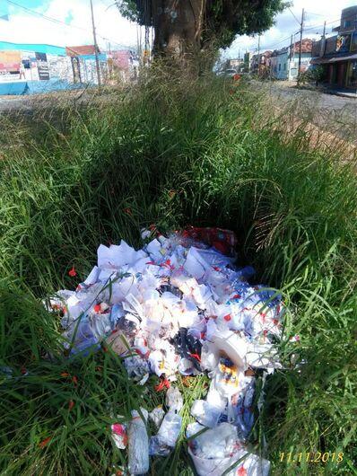 Mato e lixo tomam conta da Rua Larga - Crédito: Divulgação