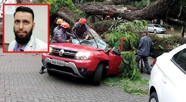 Morador de São Carlos morre após árvore cair sobre carro em Piracicaba - Crédito: Redes Sociais
