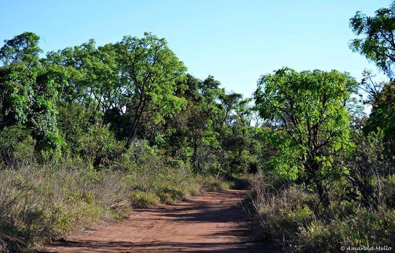 UFSCar promove reunião aberta que discute Protocolo do Cerrado - Crédito: Amanda Mello