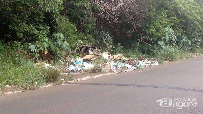 Em São Carlos, não se respeita nem área de reflorestamento - Crédito: Divulgação
