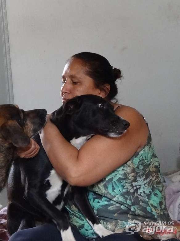 Mulher que cuida de 50 animais abandonados precisa de doação de ração -