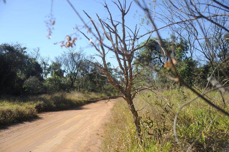 UFSCar realiza passeio ciclístico no Cerrado neste sábado, 8 de dezembro - Crédito: Divulgação