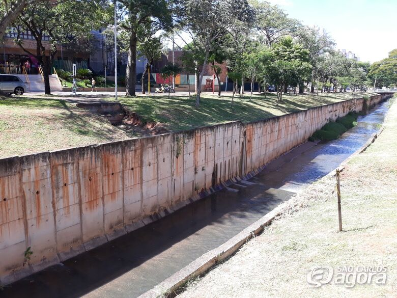 Vereador Sérgio Rocha questiona Prefeitura sobre construção de passarela em frente ao Sesc - Crédito: Divulgação