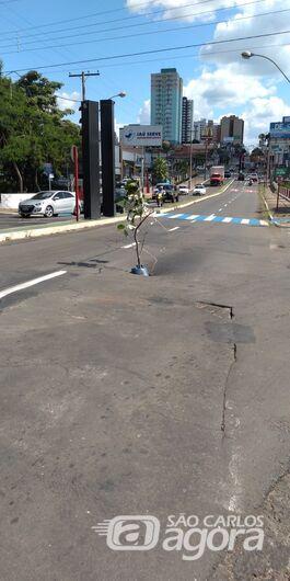 """Em """"asfalto fértil"""", nasce até árvore na Avenida São Carlos - Crédito: Divulgação"""