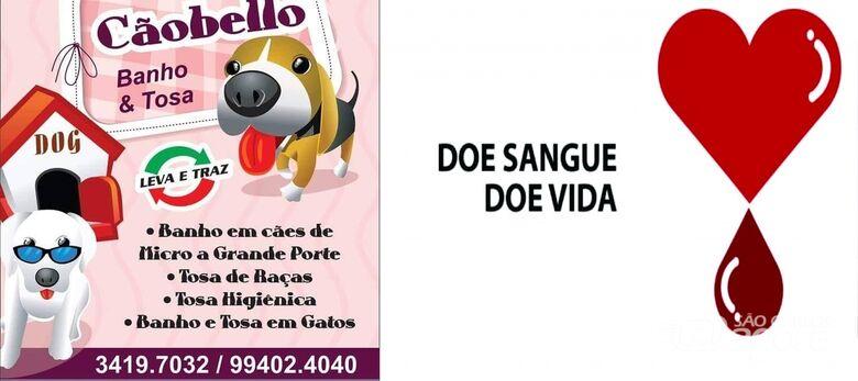 Petshop realiza campanha de incentivo a doação de sangue - Crédito: Divulgação