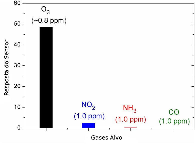 Pesquisadores desenvolvem em São Carlos sensor de ozônio altamente seletivo - Crédito: Divulgação