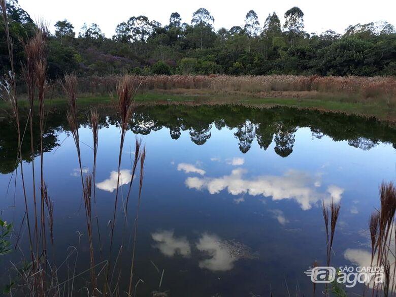 Visita monitorada ao Cerrado celebra Dia Mundial do Planeta Terra - Crédito: Trilha da Natureza/UFSCar