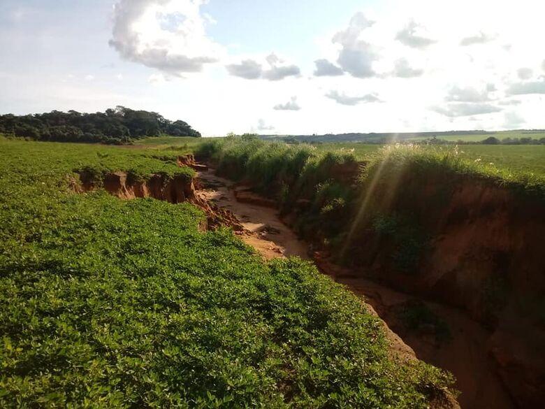 Roselei denuncia devastação ambiental no Arcoville - Crédito: Divulgação