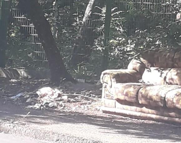 Após limpeza de chácara, sujeira é descartada em área de preservação ambiental - Crédito: Divulgação