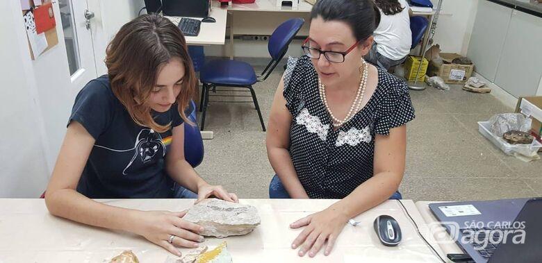 Professora da UFSCar investiga como argilas preservam organismos fósseis - Crédito: Divulgação