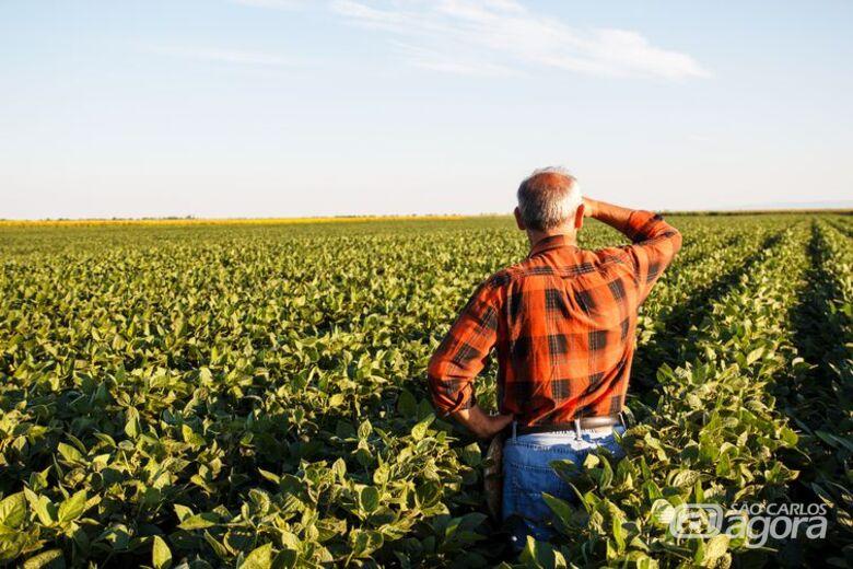 Caixa disponibiliza R$ 60 milhões para médio produtor rural de São Carlos e região -
