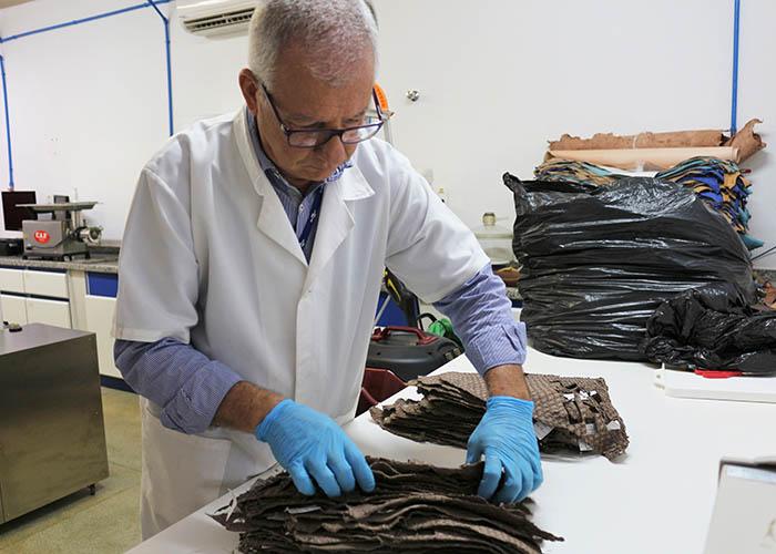 Cientistas desenvolvem protocolo para testar  resistência de couros de peixes em São Carlos - Crédito: Laura Pereira