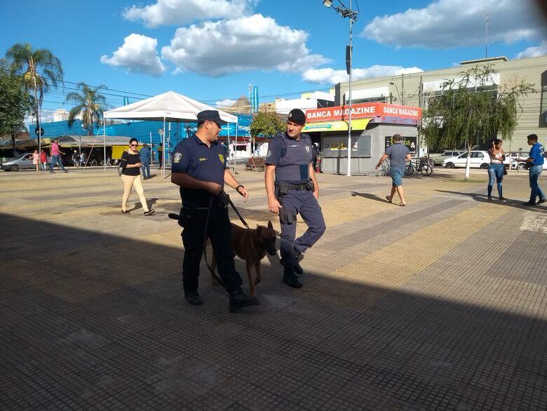"""Guardas Municipais participam de curso sobre """"Condução de Cães de Polícia - Crédito: Divulgação"""