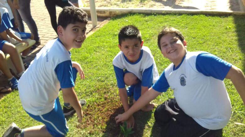 Alunos da Maria Luiza Batistela Danieli plantam árvores frutíferas em projeto do meio ambiente - Crédito: Divulgação
