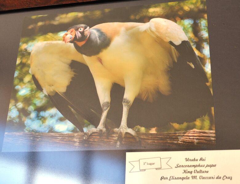 Parque Ecológico abre inscrições para concurso de fotografia -