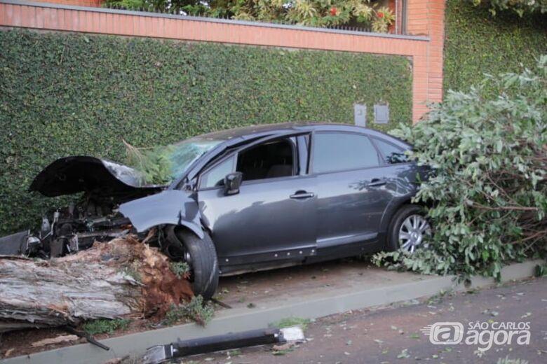 Carro bate violentamente em duas árvores e motorista foge do local - Crédito: Marco Lúcio
