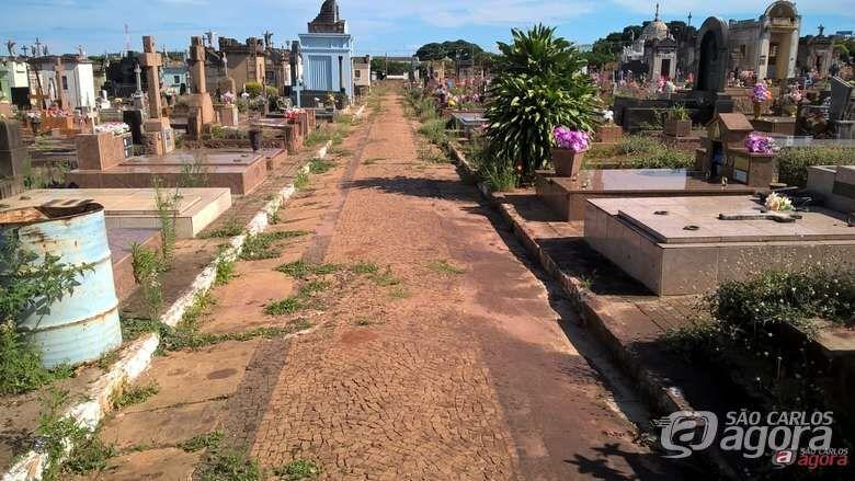 Mulher de 77 anos é detida ao tentar furtar vaso no cemitério Nossa Senhora do Carmo - Crédito: Arquivo/SCA